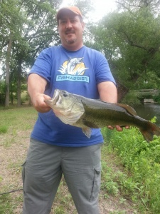 Bob's June Bass